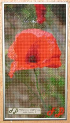 010-Coquelicot pixel