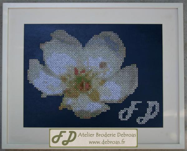008-Fleur de poirier